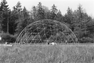 Geodesic Dome construction on the mudflats